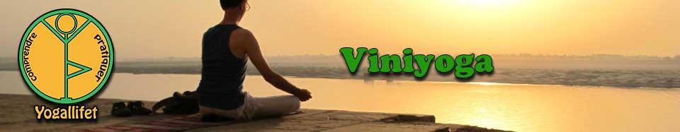 yoga, viniyoga, cours de yoga, leçon de yoga,